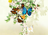 Flutter - Ojolie eCard from ojolie.com